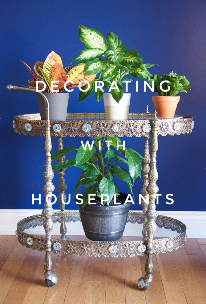 Plant Vibes | Decorating With Houseplants
