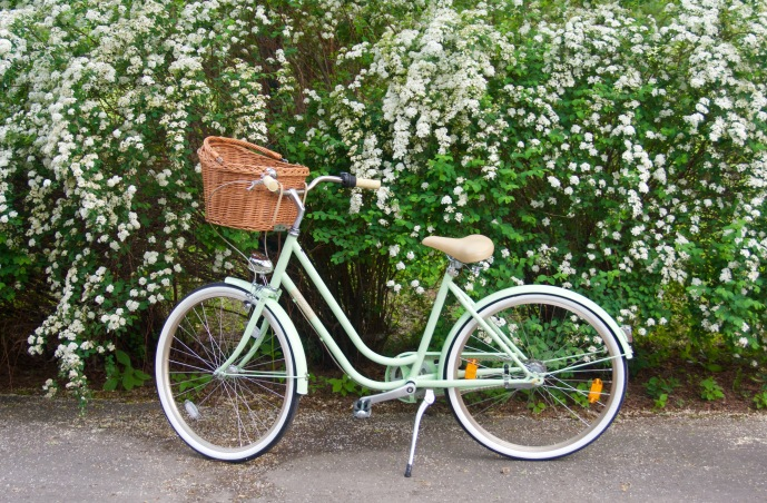 Creme Molly Dutch bike Pistachio cruiser
