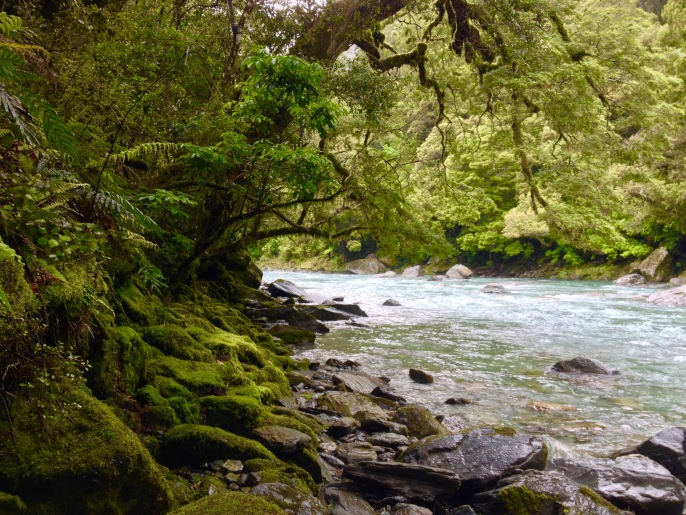 New Zealand Mount Aspiring National Park river travel