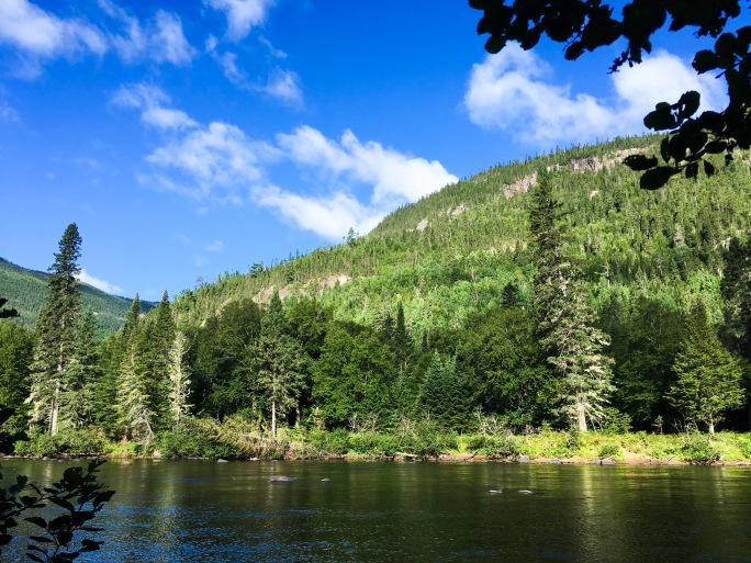PARC NATIONAL DES HAUTES-GORGESDE-LA-RIVIÈRE-MALBAIE pin-blanc campsite river