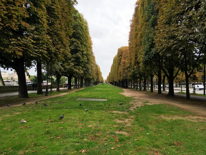Paris travel Champs-Elysees trees