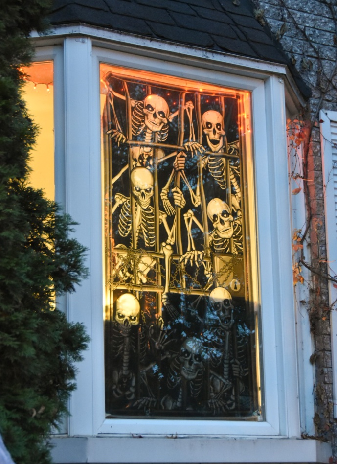 Halloween outdoor decor skeletons window