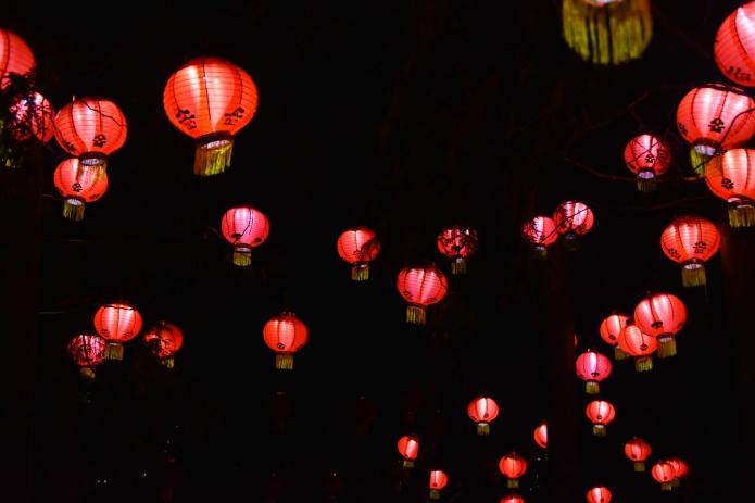 Montreal Botanical Gardens Chinese Lanterns