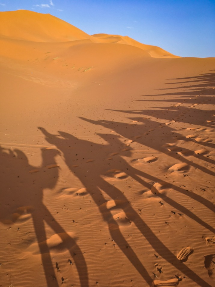 Sahara Desert Morocco travel Montreal lifestyle fashion beauty blog 1