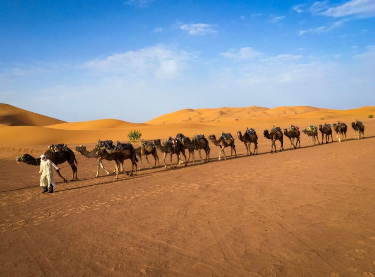 Sahara Desert Morocco travel Montreal lifestyle fashion beauty blog 4